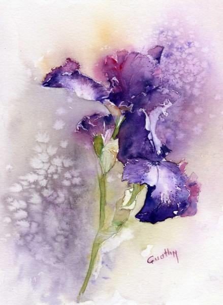 quathy-aquarelle-Iris-mauve.jpg-439x600