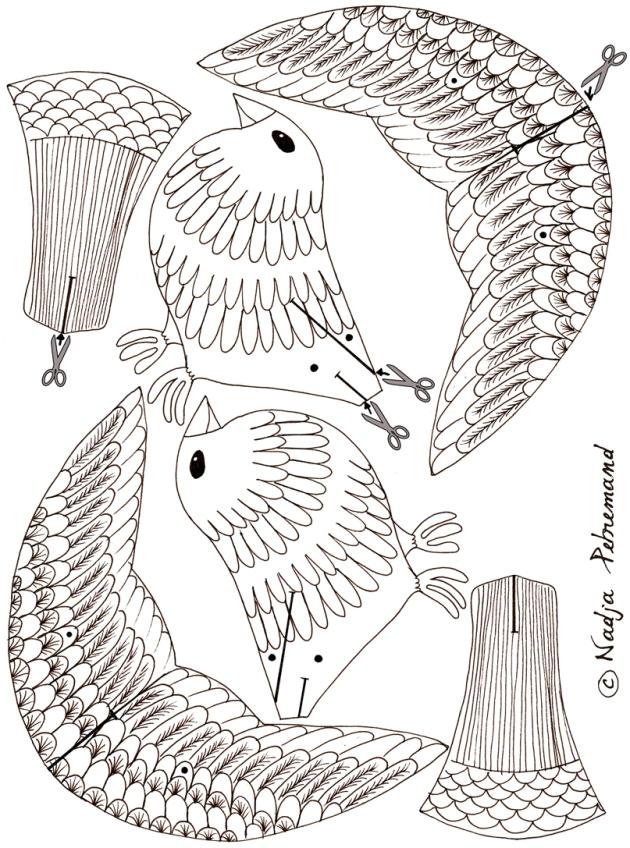 coloriage gratuit oiseaux n
