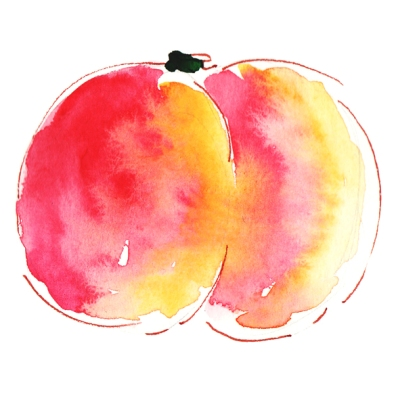 dessin nectarine