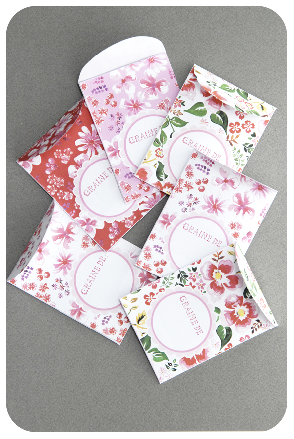 free printable package for seeds gratuit sachet graines 3