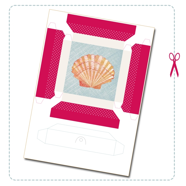 free printable shell collection box 1