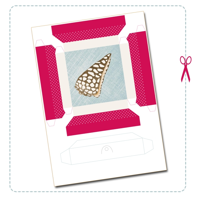 free printable shell collection box 4