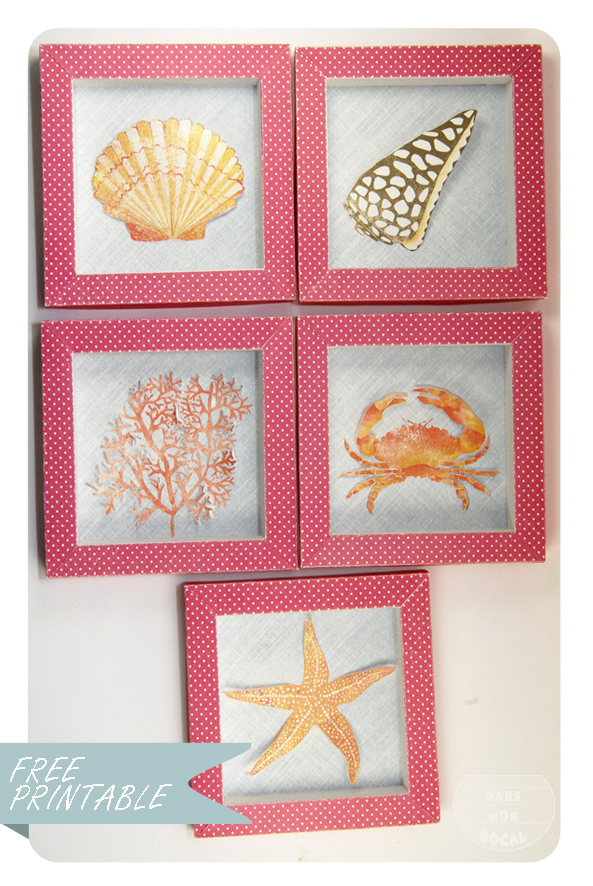 free printable shell collection box 6