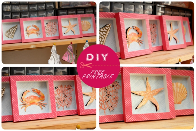 free printable shell collection box 8