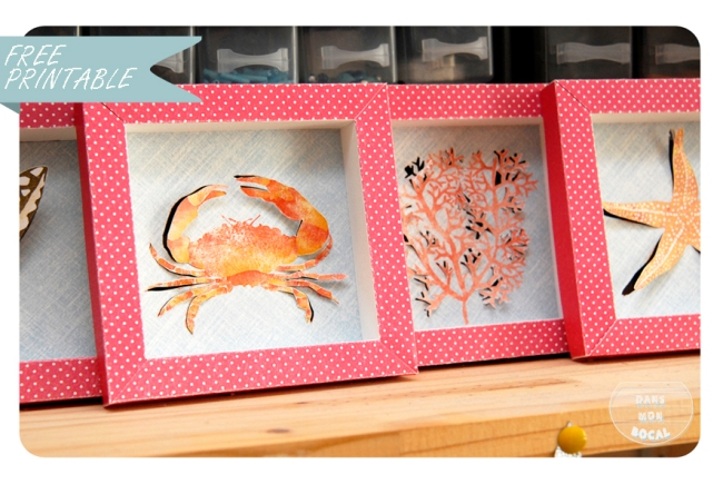 free printable shell collection box 9