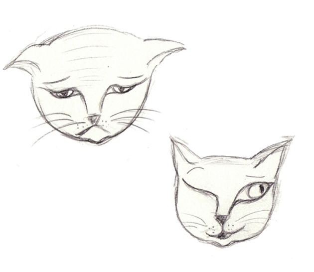 illusration mimique de chat 1