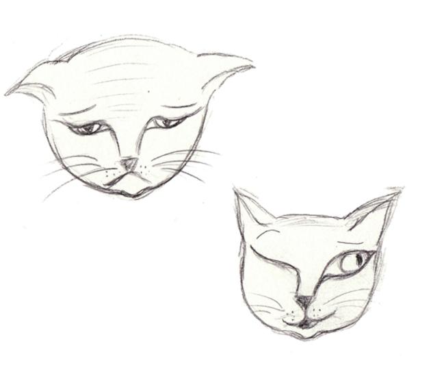 illusration mimique de chat 1