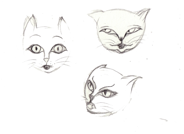 illustration bouille de chat