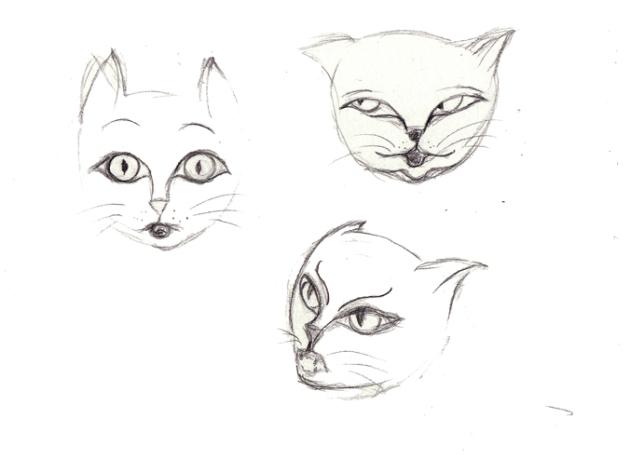 illustration bouille de chat