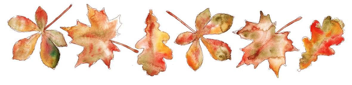 Couronne d automne dans mon bocal - Image feuille automne ...