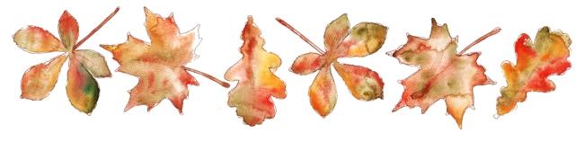 illustration feuilles d'automne