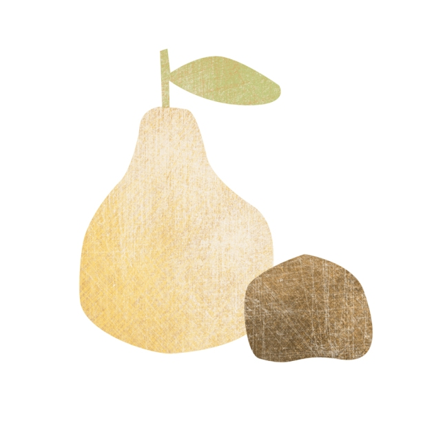 illustration poire et marron