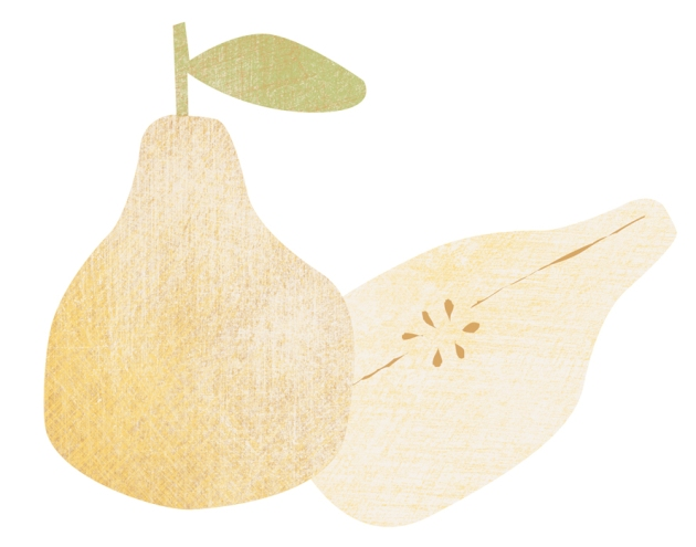illustration poire