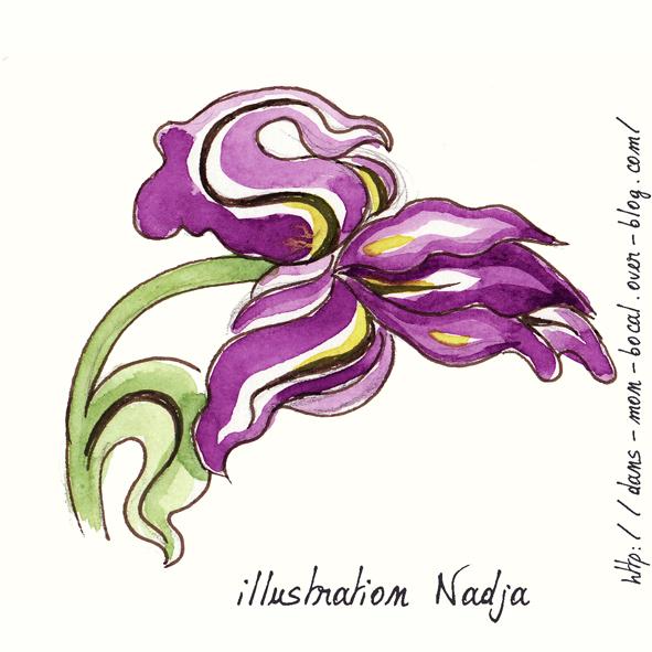 iris stylisé