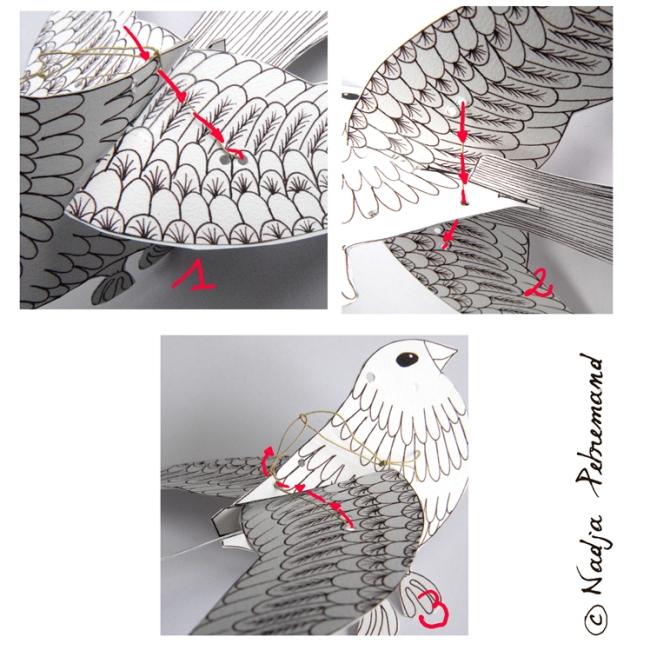 oiseau à colorier