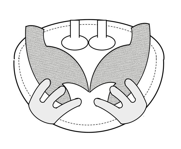 porte monaie crabe shema de montage