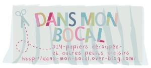 DANS MON BOCAL archive