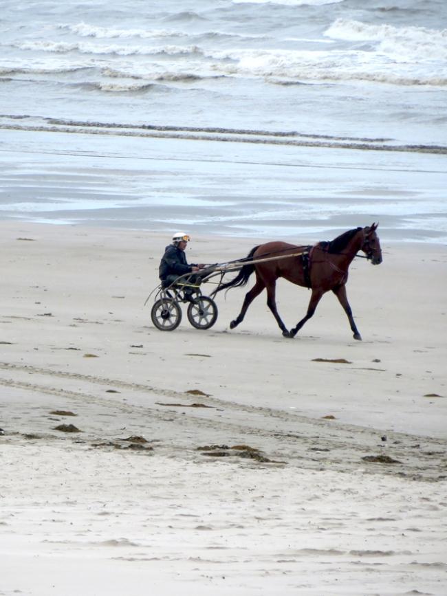 jour de vent à la plage de zuydcoote 3