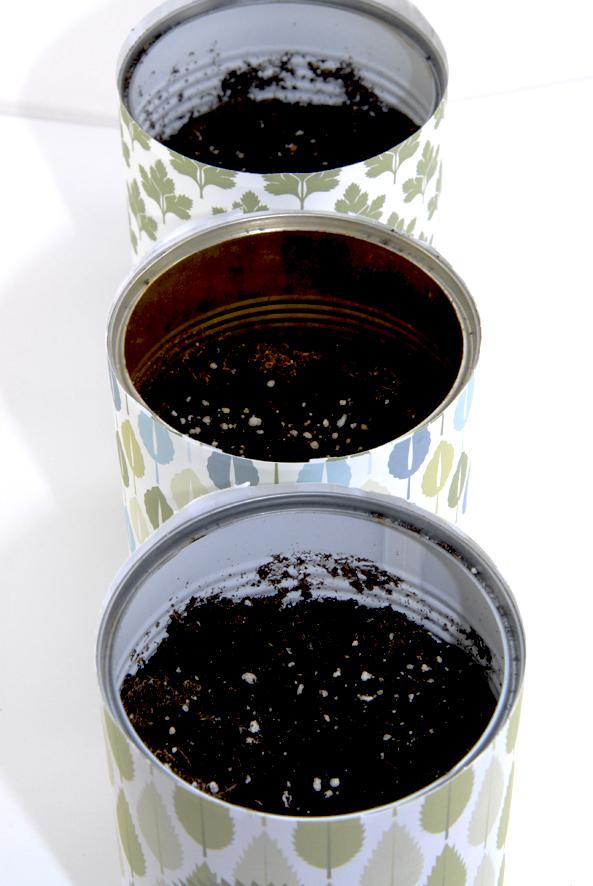 Pot boite de concerve pour aromates 1