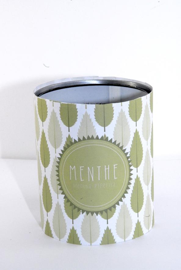 Pot boite de concerve pour aromates menthe