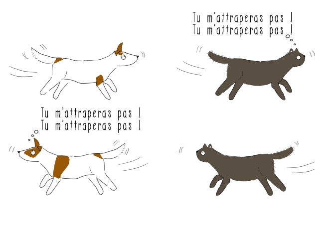 illustration jack russell qui course un chat