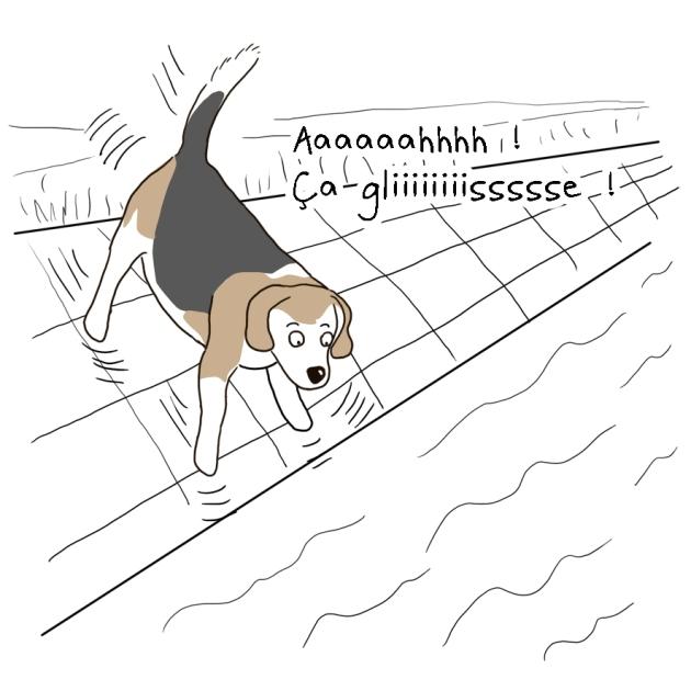 anatole le beagle dans le canal 1