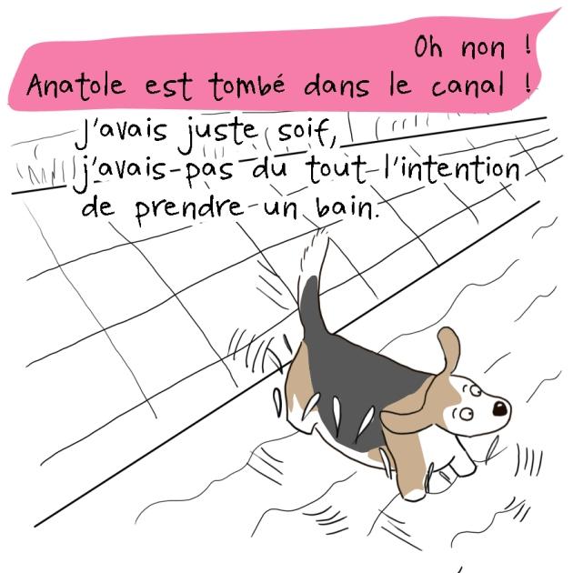 anatole le beagle dans le canal 2