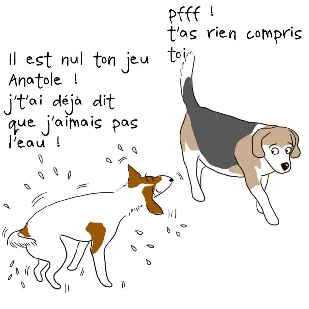 anatole le beagle et Diesel le Jack Russell dans le canal 8