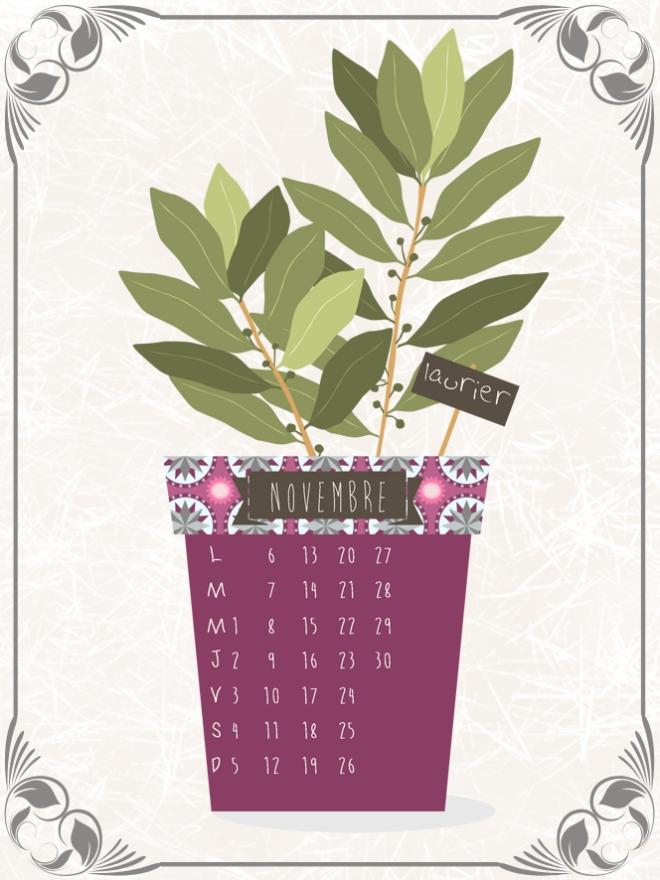 plantes-aromatique-en-pot-laurier