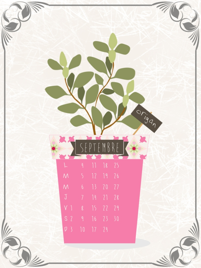 plantes-aromatique-en-pot-origan