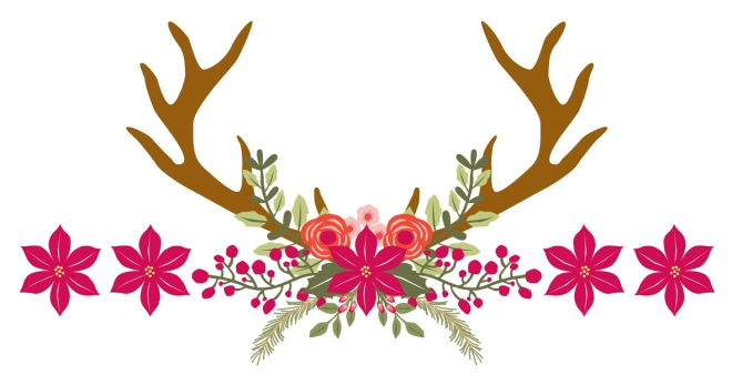 poinsettia-cerf-houx-noel-illustration
